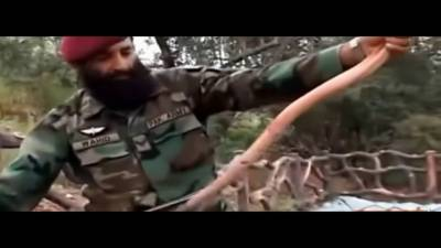 پاکستانی فوج کے کمانڈوز سانپ کیوں کھاتے ہیں؟ ایسا انکشاف کہ جان کر آپ دنگ رہ جائیں گے