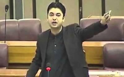 ایک کروڑ نوکریوں کے حوالے سے آگے بڑھ رہے ہیں،مراد سعید
