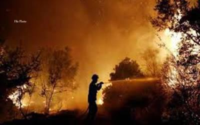 کیلیفورنیا کے شمالی جنگلات میں آتشزدگی ،متعدد زخمی ، ہنگامی حالت نافذ