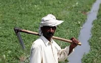 پریشان حال چھوٹے کسان