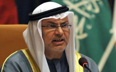 سعودی دارالحکومت میں خلیج تعاون کونسل کا سربراہی اجلاس تنظیم کے فعال ہونے کی واضح نشانی ہے:ڈاکٹر انور قرقاش