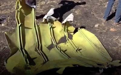 ایتھوپین طیارہ تباہ ہونے سے قبل اس کے پائلٹ نے کیا کہا اور 'فلائٹ ریڈار 24 'کو کیا خرابی نظر آئی ؟ پتا چل گیا