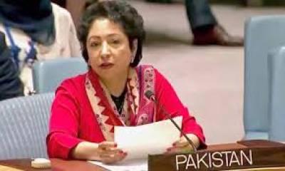 مسلمانوں کے خلاف تعصب سے بدامنی وانتشارمیں اضافہ ہوگا' ملیحہ لودھی