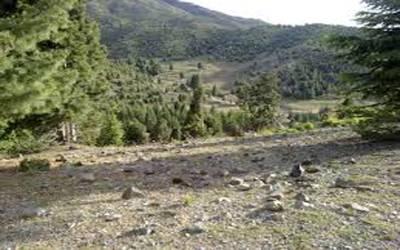 جنوبی وزیرستان میں ایک ماہ کیلئے دفعہ 144 نافذ