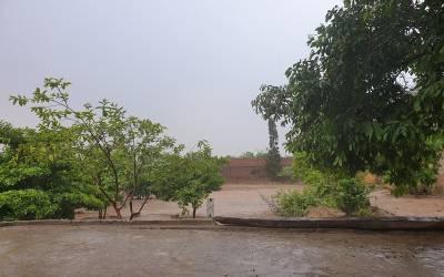 موسلا دھار بارش نے گرمی کا زور توڑ دیا، لاہور کے شہری خوشی سے نہال