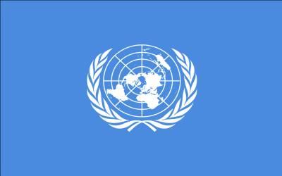 مقبوضہ کشمیر میں بھارتی مظالم پر اقوام متحدہ میں پاکستان کا پہلا بڑا قدم