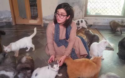سڑکوں پر گاڑیوں کے نیچے آجانے والی بلیوں کو اُٹھا کر ان کی مرہم پٹی کرنے والی عظیم پاکستانی لڑکی، یہ ہے میرا پاکستان!