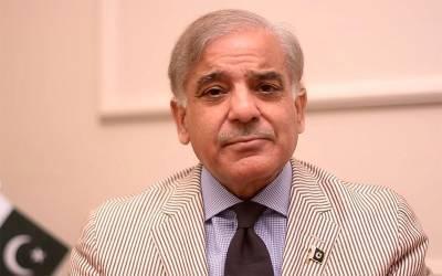 شہبازشریف کا مولانا فضل الرحمان کے آزادی مارچ میں بھر پور شرکت کا اعلان