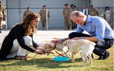 کیا آپ کو پتا ہے کہ شاہی جوڑے نے پاکستان میں بم سونگھنے والے کتوں کو ٹریننگ بھی دی؟ تصاویر سامنے آگئیں