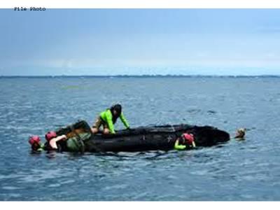 سمندر کی تہہ میں ماں کے اپنے شیر خوار بچے کو سینے سے چمٹائے 10 دن پرانی لاش برآمد ہونے پر غوطہ خور رو پڑے