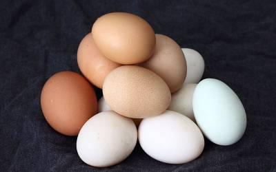 کراچی میں پلاسٹک کے انڈے پکڑے گئے، یہ دراصل کیا ہیں؟ پاکستانیوں کے لئے خطرناک خبر آگئی