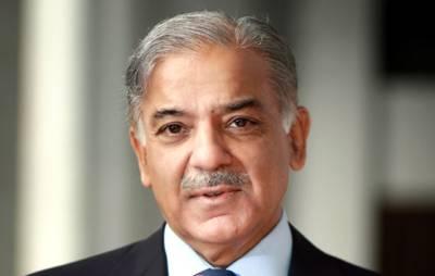 شہباز شریف سابق صدر آصف زرداری کے حق میں میدان میں آگئے