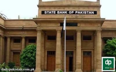 پاکستان کے زرمبادلہ کے ذخائر میں اچانک 44 کروڑ ڈالر کا اضافہ کیسے ہو گیا؟ اصل حقیقت سامنے آگئی