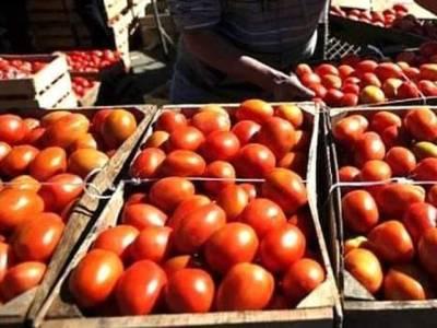 ایران سے ٹماٹروں کی پہلی کھیپ تفتان بارڈر پر پہنچ گئی