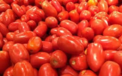 مہنگے ٹماٹر بیچنے والوں کیخلاف کریک ڈاﺅن