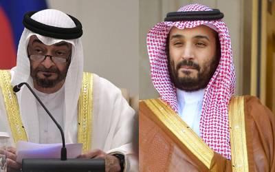 سعودی عرب اور متحدہ عرب امارات مل کر اربوں ڈالر کی لاگت سے اب بھارت میں کیا کام کرنے جارہے ہیں؟ خبرآگئی