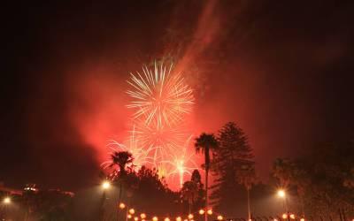 نیاسال اورنئی دہائی مبارک ہو! نیوزی لینڈمیں شاندار جشن، آتشبازی