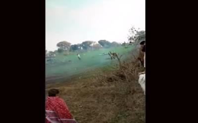 پاکستان ایئر فورس کا طیارہ میانوالی میں گر کر تباہ