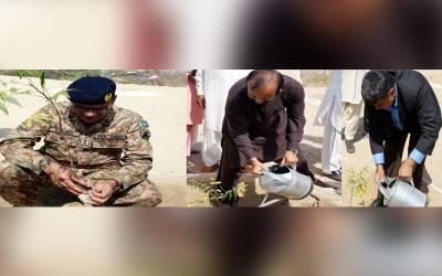 شجرکاری مہم، پاک فوج نے لاکھوں پودے لگادئیے