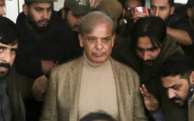 لاہورہائیکورٹ،نیب نے شہبازشریف کی مستقل حاضری معافی کااقدام چیلنج کردیا