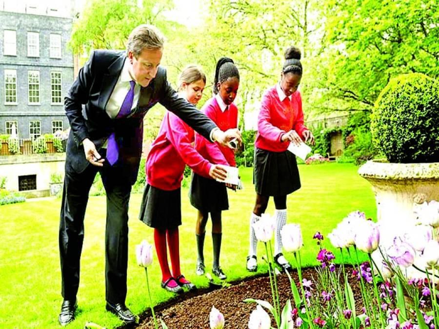 لندن: برطانوی وزیر اعظم ڈیوڈ کیمرون سکول بچوں کے ہمراہ گارڈن میںبیج ڈال رہے ہیں