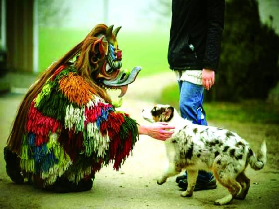 برلن: ایک جرمن شخص خوفناک بھوت کا روپ دھارے ایک کتے کو ڈرانے کی کوشش کررہاہے