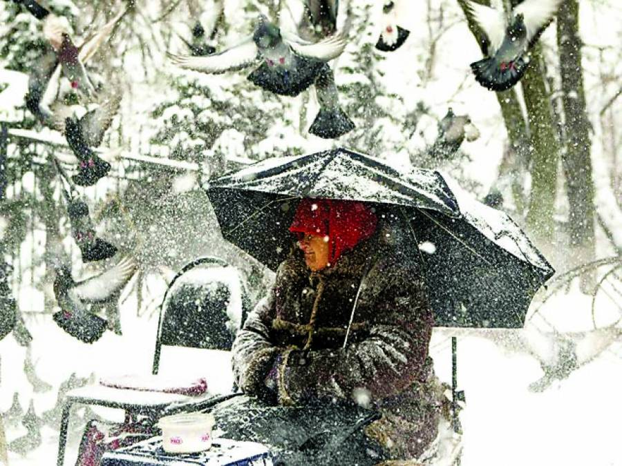 سڈنی: خاتون شدید برف باری میں بھیک مانگنے کیلئے بیٹھی ہے