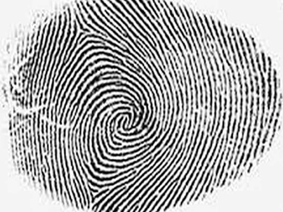 جعلی پولنگ سے بچنے کیلئے نادرا کا ڈیٹا بیس مکمل اور درست کیا جائے