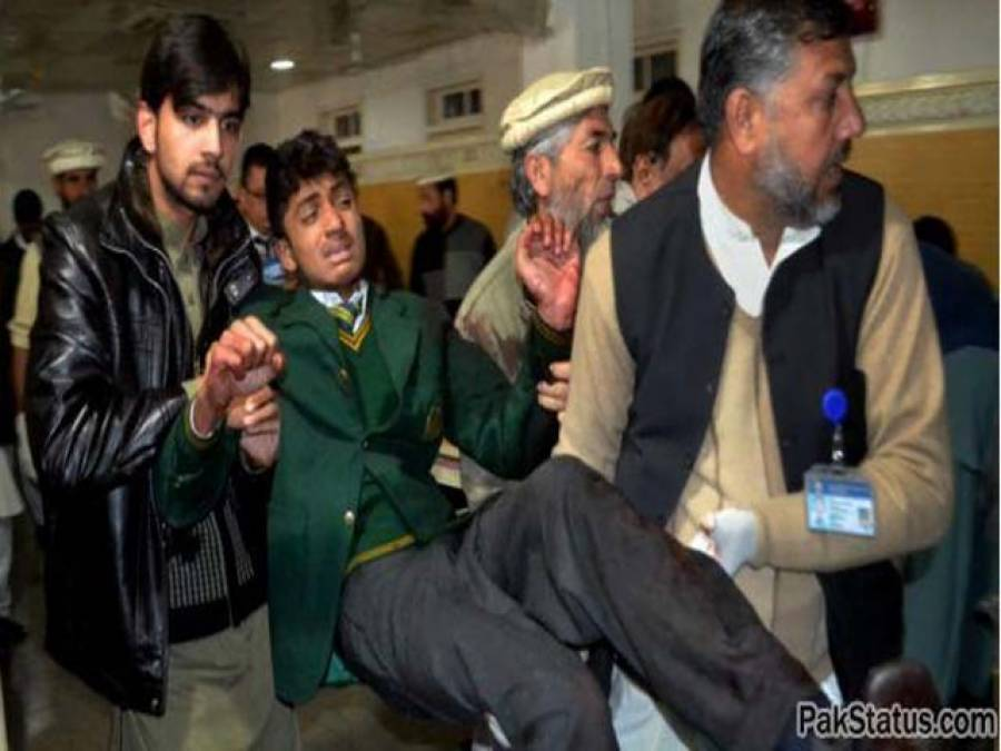سانحہ پشاور کا ایک سال