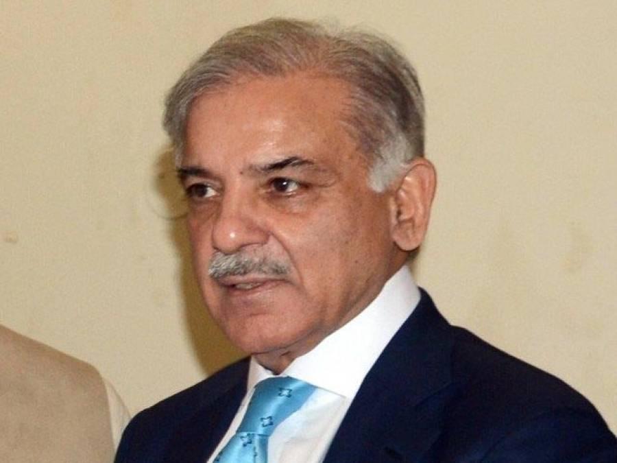 میاں محمد شہباز شریف :مستقبل کے وزیر اعظم