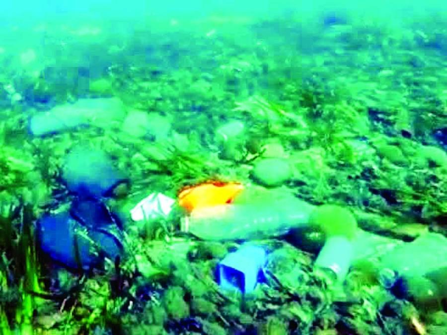 سمندرکے گہرے ترین مقام بھی انسانی گندگی سے غیر محفوظ