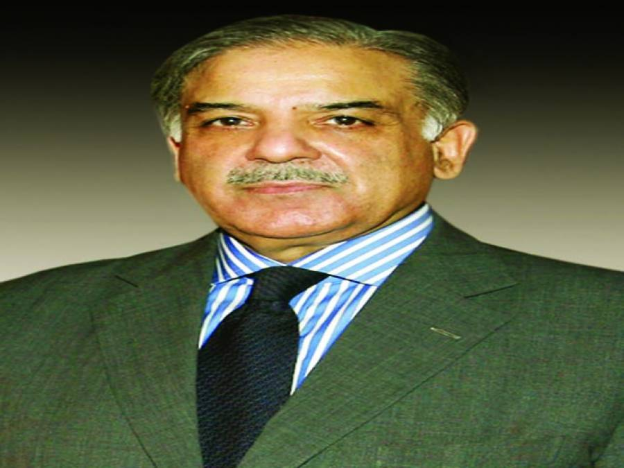 عوام کے مسترد سیاسی عناصر کی سازشیں کامیاب نہیں ہوں گی : شہباز شریف