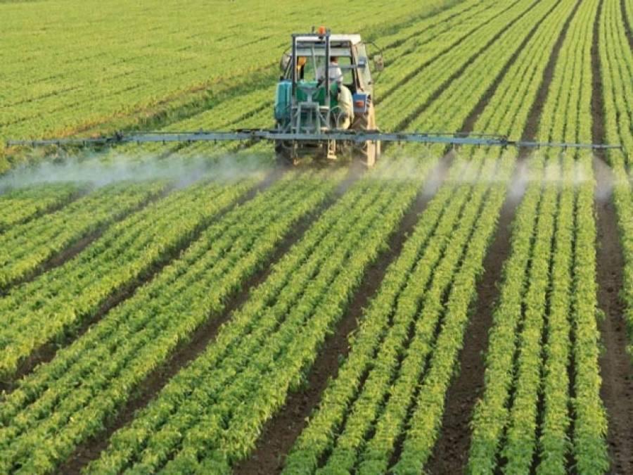 کپاس ،چاول اور گنے کے کاشتکاروں کا تحفظ