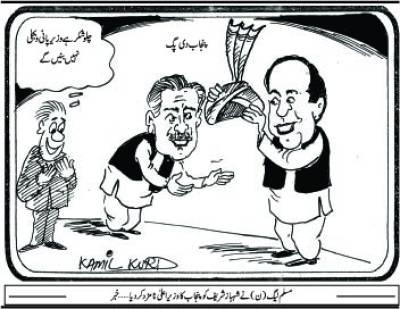 مسلم لیگ(ن) نے شہبازشریف کو پنجاب کا وزیر اعلیٰ نامزد کر دیا....خبر