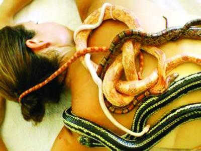 درد دور کروانے کے لئے سانپوں کے ذریعے علاج