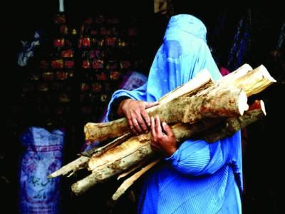 کابل: افغانی خاتون آگ جلانے کیلئے لکڑیاں لیکر جا رہی ہے