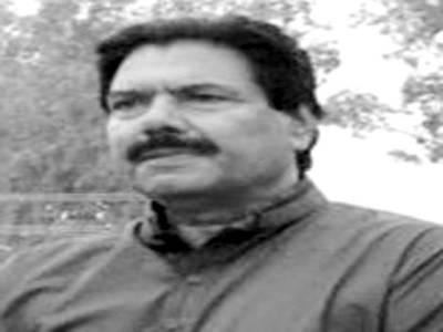 ضمنی انتخابات کے نتائج نے پی ٹی آئی کی مقبولیت واضح کر دی ہے، میاں محمود احمد