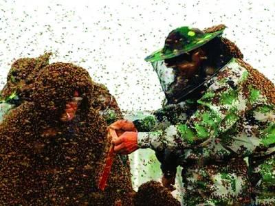 چینی شخص کا انوکھا اقدام،خود کو شہد کی مکھیوں کے انسانی چھتے میں بدل لیا