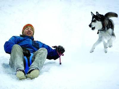 نیویارک: ایک شخص کتے کے ہمراہ برفانی علاقے میں برف سے لطف اندوز ہو رہا ہے