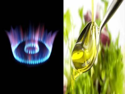 حیاتیاتی ایندھن کا بے دریغ استعمال اور ہماری نسلوں کا مستقبل