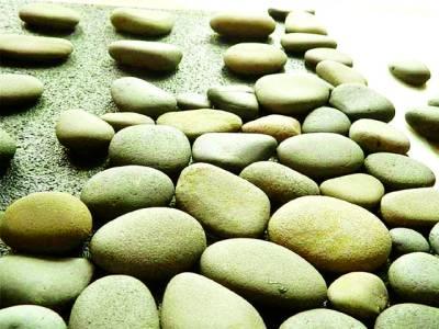 امریکا میں چمڑے میں لپٹے عام پتھروں کی مہنگے داموں فروخت