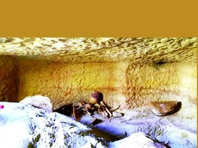 3500سال پرانا مقبرہ سے رینگنے والے جانوروں کے ڈھانچے برآمد