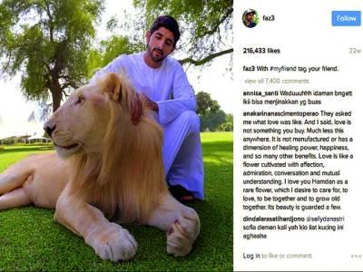 ولی عہد دبئی کے 'انسٹا گرام' پر 50 لاکھ فالورز!