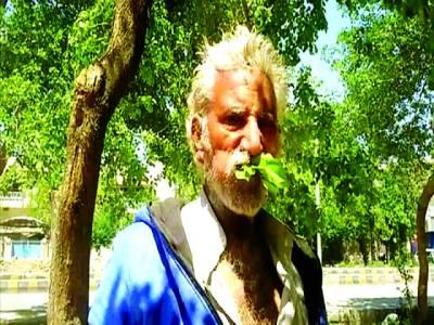 لکڑی اور پتے کھانے والا 50 سالہ پاکستانی