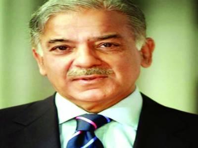 پنجاب کا بجٹ عوام دوست ہو گا ، کوئی نیا ٹیکس نہیں لگائیں گے : شہباز شریف