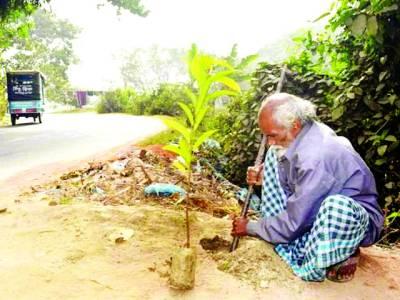 48 سال سے روزانہ درخت اگانے والا باہمت رکشہ ڈرائیور