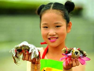 چین میں کیکڑوں کا دلچسپ فیشن شو،خوبصورت کپڑے پہنائے گئے