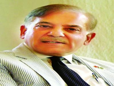 نیازی صاحب نے ہر موقع پر جھوٹ بولنے کے عالمی ریکارڈ قائم کیے : شہباز شریف