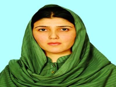 گلالئی الزامات ، سپیکر نے پارلیمانی کمیٹی بنا دی ، تحریک انصاف کا ماننے سے انکار ، عائشہ ایوان میں اجنبی ہیں ، شیریں پہلے آرٹیکل 63اے پڑ ھ لیں : عائشہ