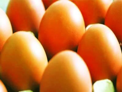 نیدر لینڈ کے آلودہ انڈے برطانیہ اور فرانس میں بھی بکنے لگے